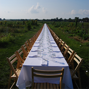 long table, outstanding
